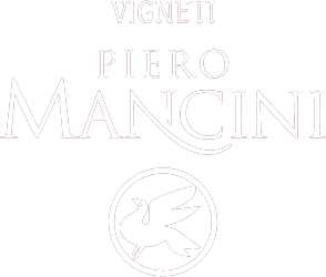 Piero Mancini Winery